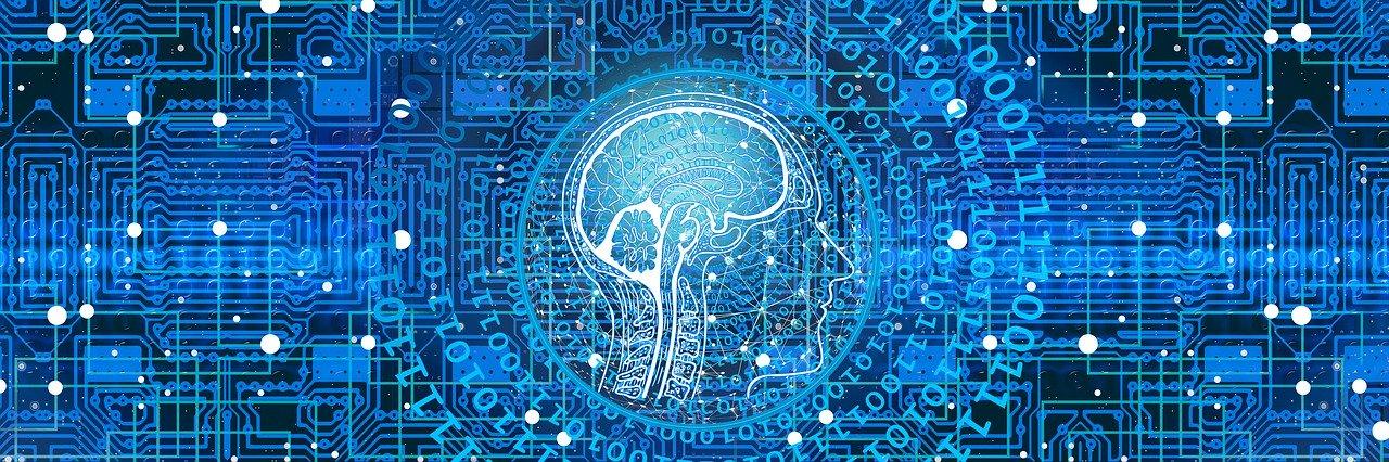 Menschliche Kopf Anatomie mit Code im Hintergrund