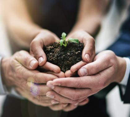 Familie hält Erde woraus eine Pflanze wächst