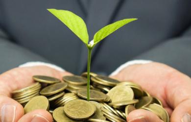 Hand hält eine Menge an Münzen, Aus einer Münze wächst eine Pflanze raus