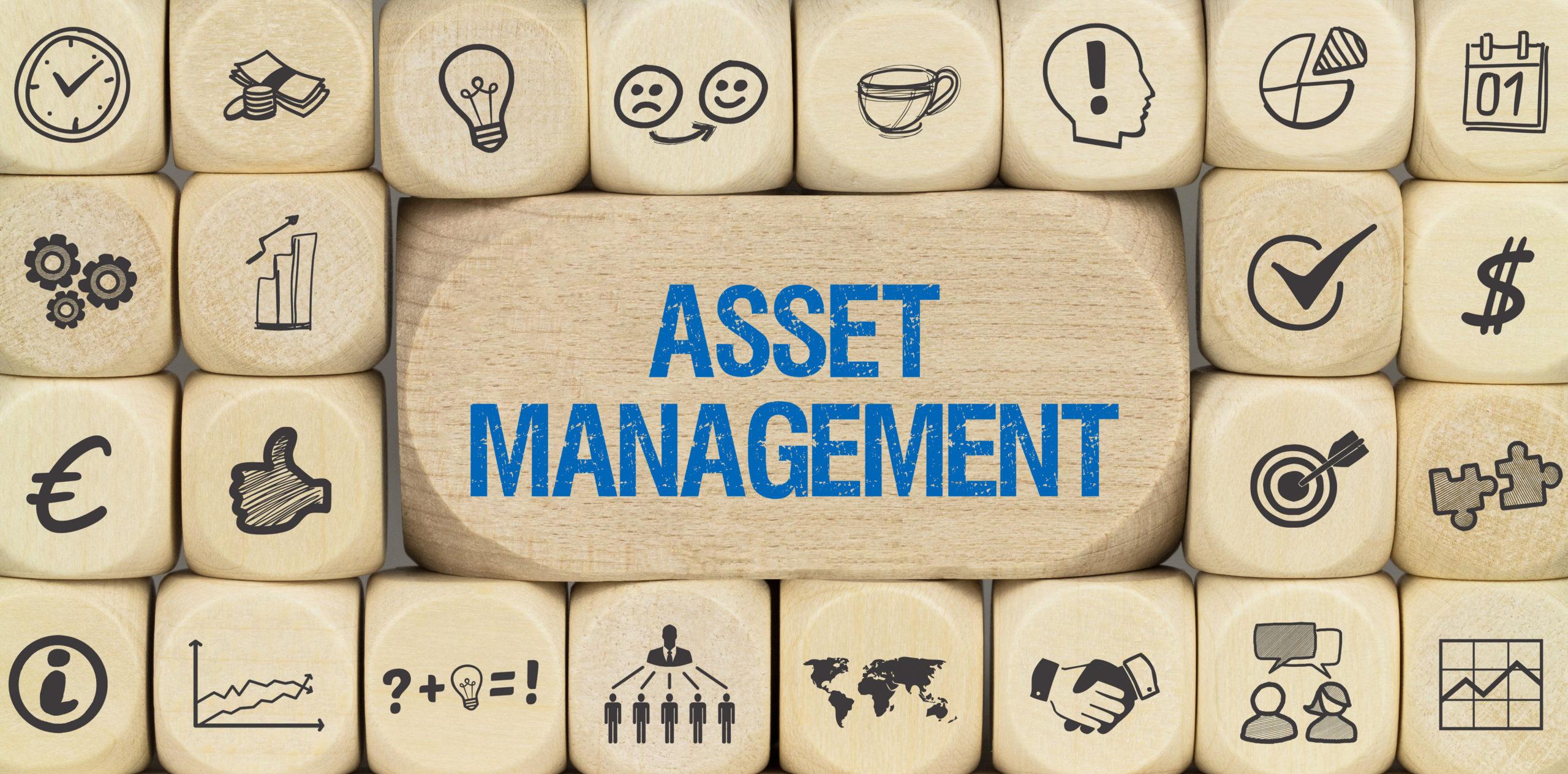 Viele kleine Holzwürfel mit Symbolen auf der Oberfläche verteilt um eine größere Würfel, die das Wort Asset Management trägt