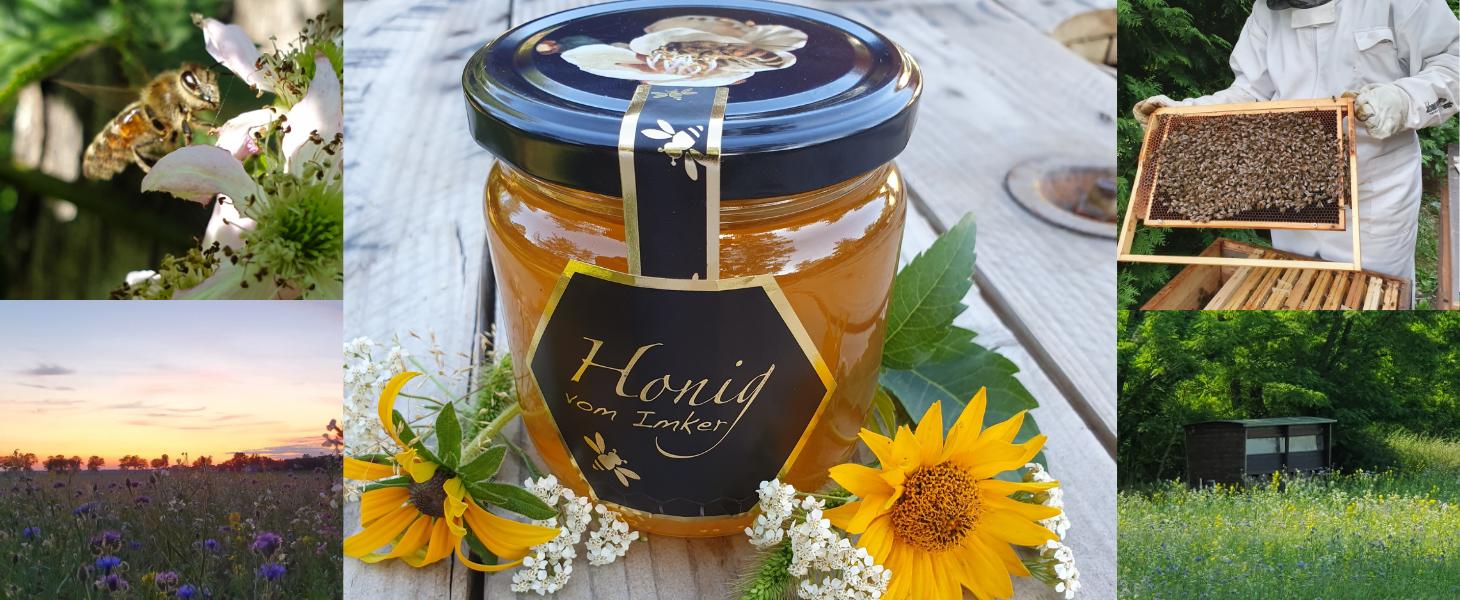 Bilder mit Honig, Bienen und BLumenFeld