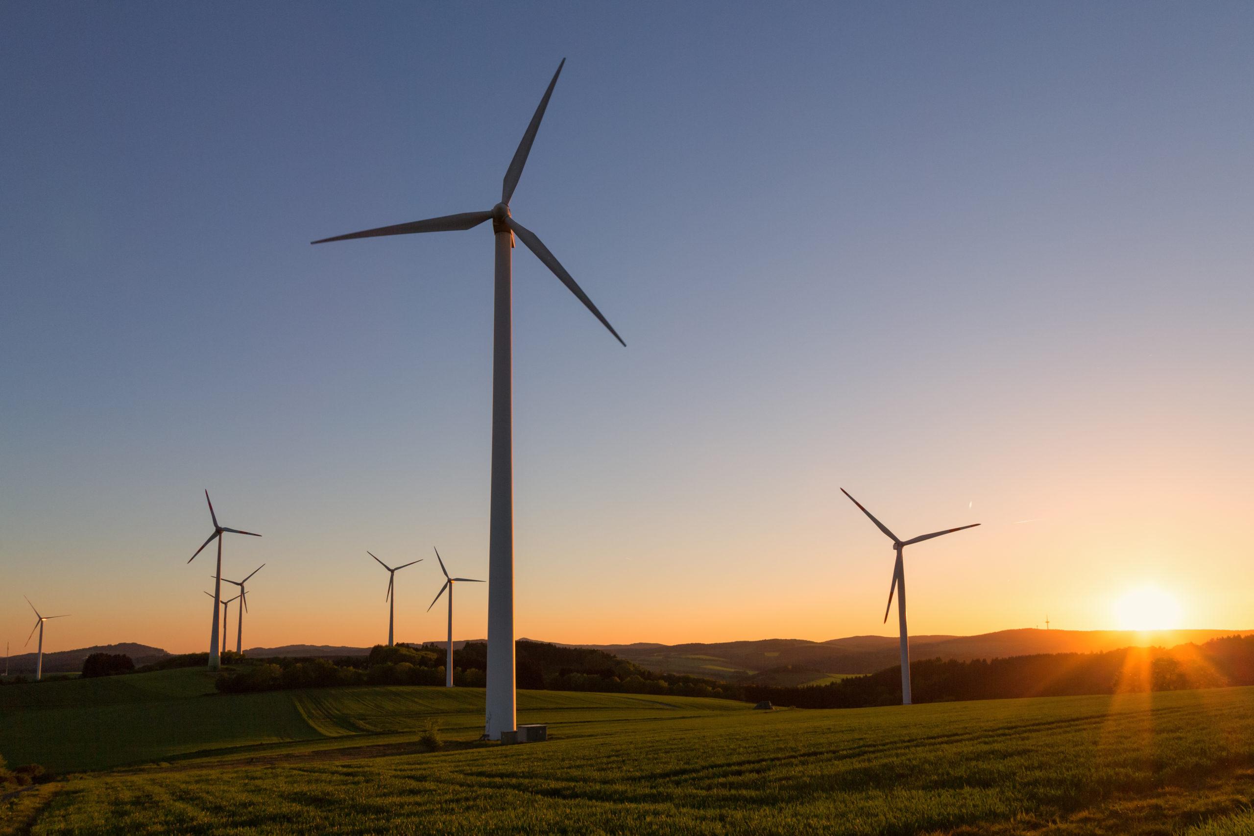 Windkraftanlagen bei Sonnenuntergang auf einem grünem Feld